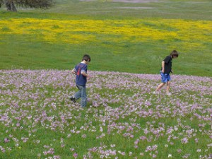 Kids playing in a field