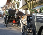 Frankenmuth Carriages