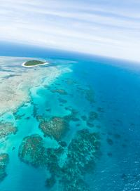 Dive - Great Barrier Reef