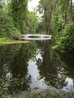 Magnolia Plantation - bridge